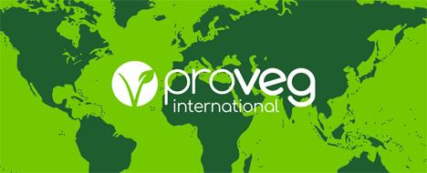 Veganer Mitbring Brunch der ProVeg Weiden Gruppe