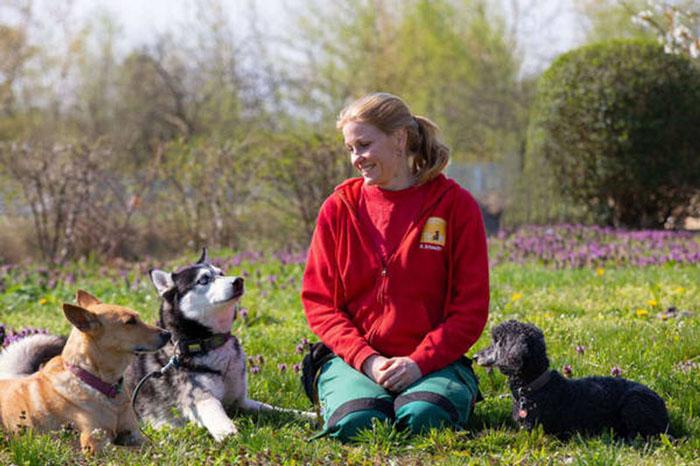 Zoom-Seminar: Das Einmaleins der Hundesprache